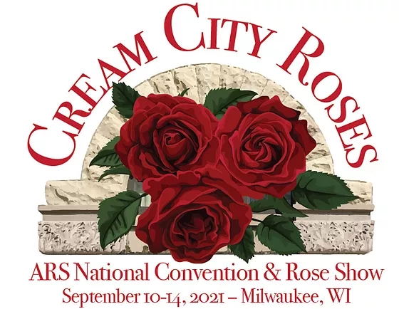 Image result for cream city roses